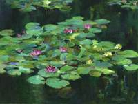 """Adrift"" acrylic on canvas paper, plein aire painting, Giverny, France, Monet's Garden [private collection]"