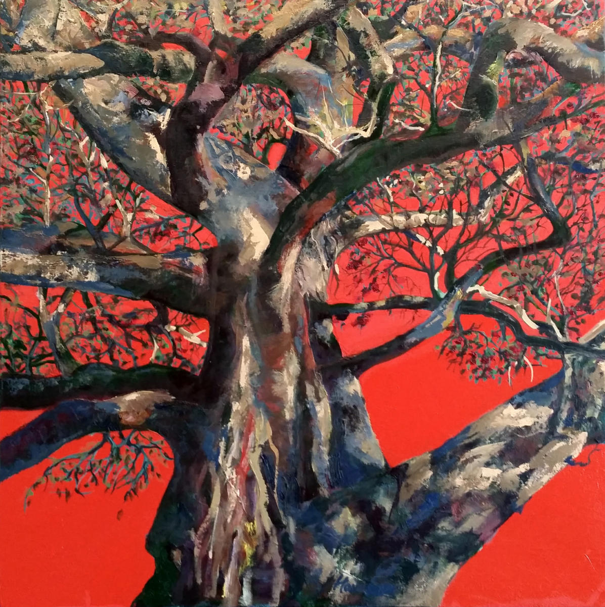"""Red Sky Tree"" oil on canvas, 61x61 cm, 24x24 inches, private collection, San Francisco, USA"