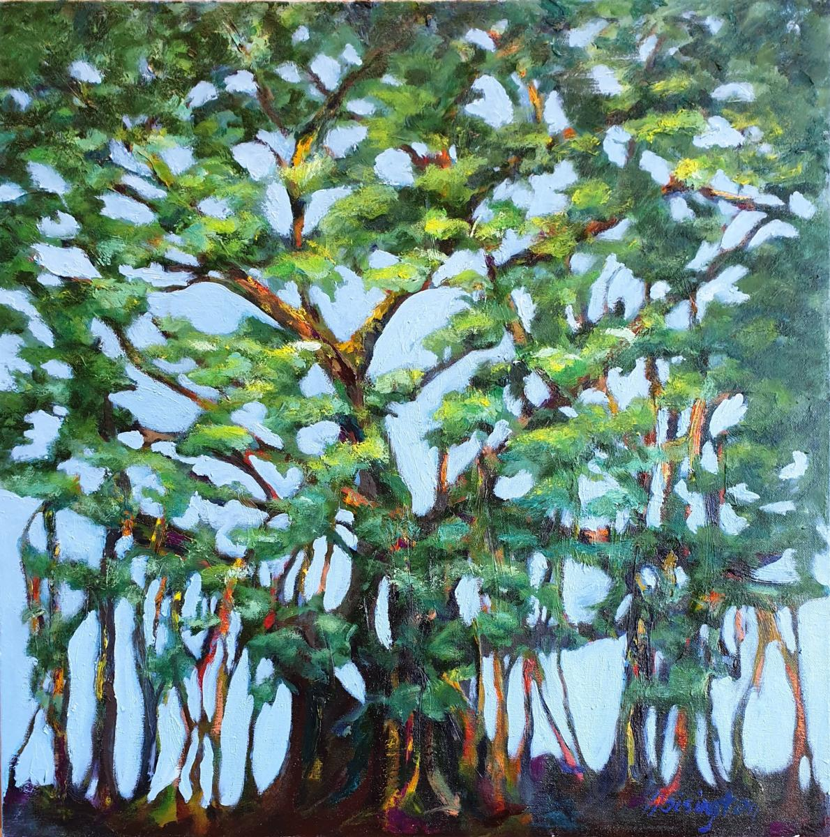 """Banyan,"" oil on canvas 61x61 cm, 24x24 inches"