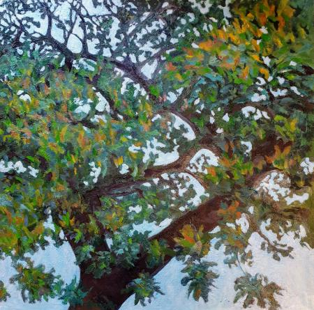 """Big Branch,"" oil on canvas 61x61 cm, 24x24 inches, private collection, Maryland, USA"